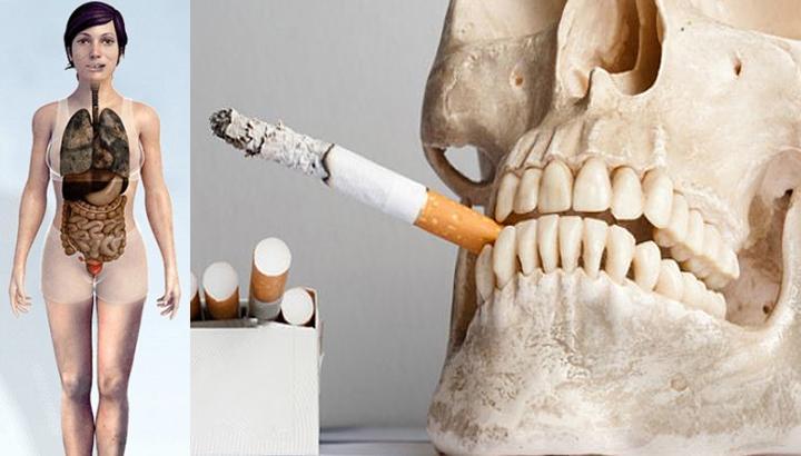 Купить клипсу бросить курить