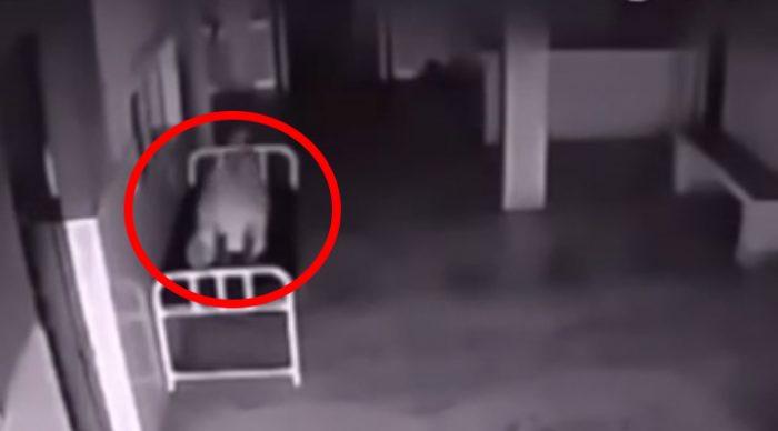 Женщина умирает в госпитале. Мурашки по коже от того, что снимает скрытая камера.