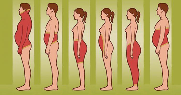 Что местоположение жира на вашем теле говорит о вас, и что с этим делать