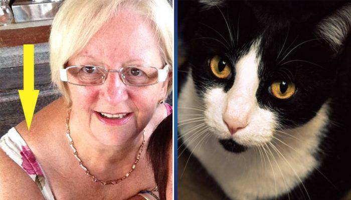 Женщина не знала, что у нее на плече. Когда кот начал странно себя вести, она сделала невероятно страшное открытие!