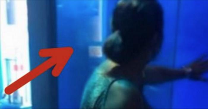 Женщина постучала по стеклу аквариума с акулами. После 0:15 она запомнит этот урок навсегда!