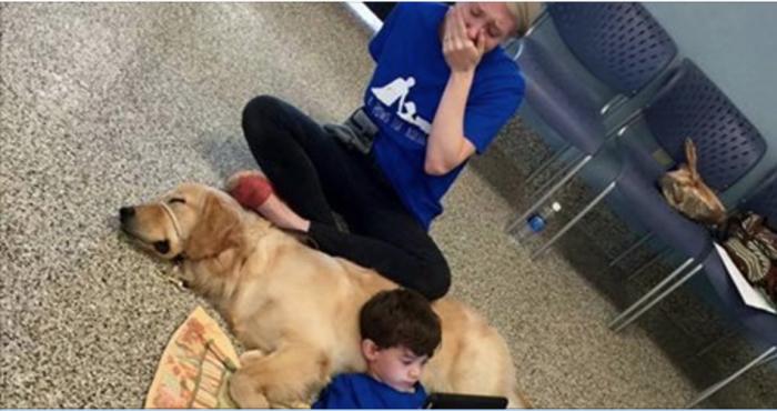 Мама рыдает, глядя, как ее сын лежит на собаке и смотрит в экран. Причина ее слез согреет ваше сердце