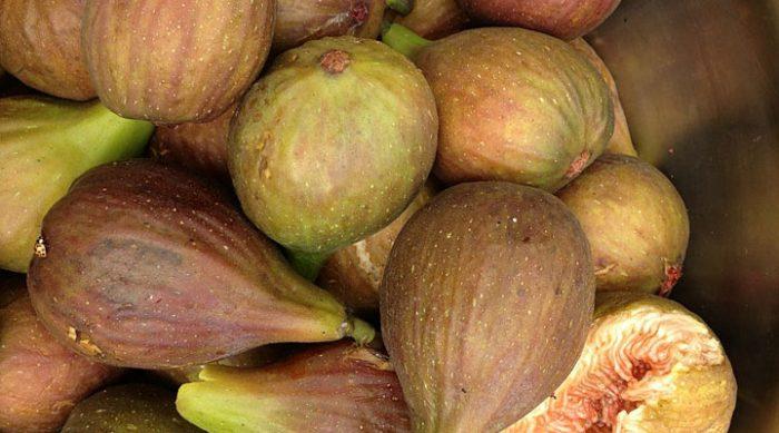 О чудесных свойствах этих плодов знали наши предки: 7 фактов о дереве здоровья и долголетия
