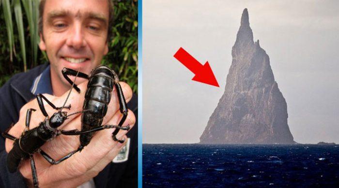 Вулканический остров с уникальной фауной, обладающей удивительными способностями.