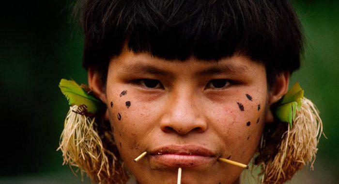 Моксихатетема: уникальное обособленное племя, которое оказалось под угрозой